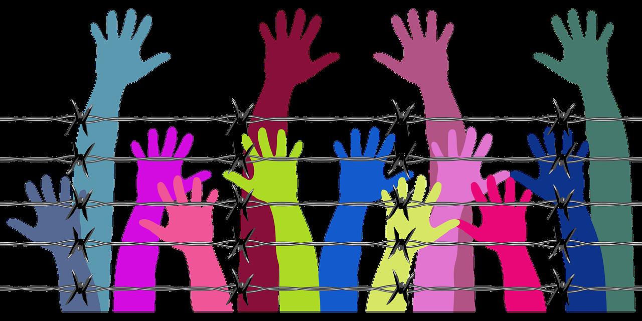 Humanização Na Educação Básica: A Contribuição Dos Direitos Humanos