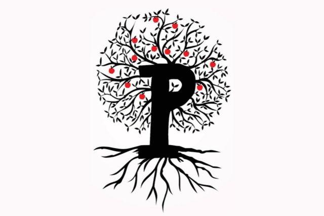 Projeto Pioneiras