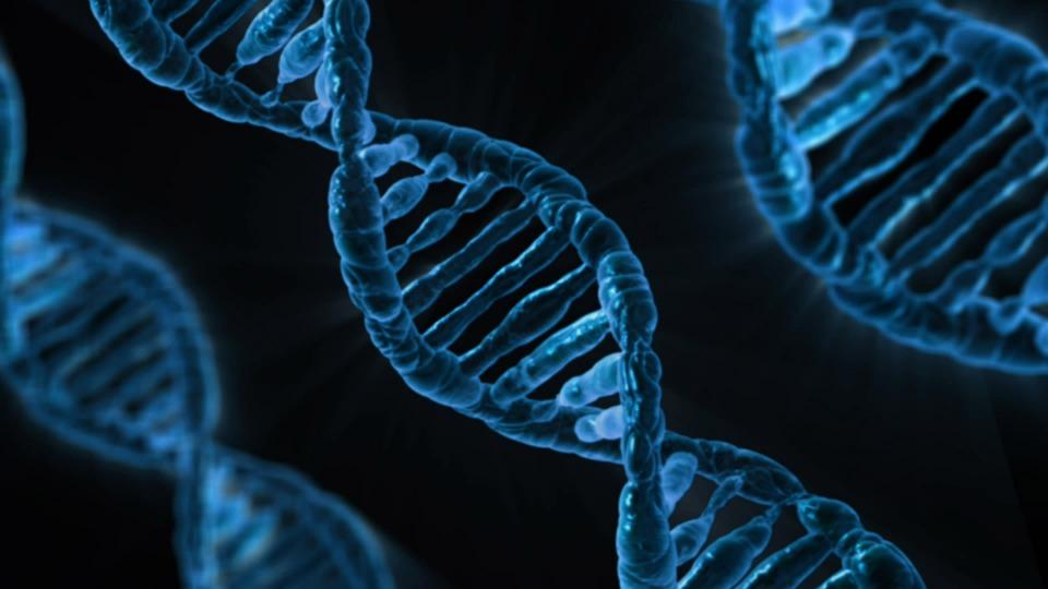 Helice De DNA