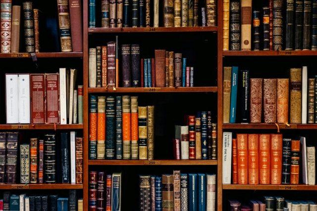 Roberto Rafael Dias Da Silva – A Universidade E Seus Currículos– Por Uma Leitura Humanista II