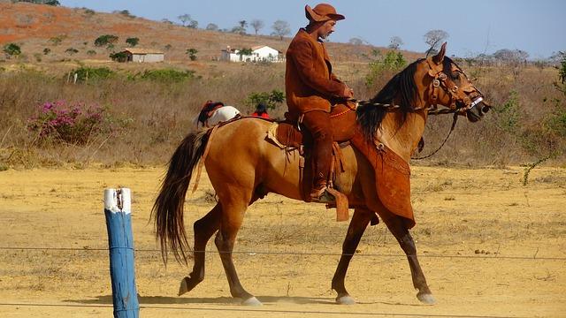 Sertanejo Andando A Cavalo