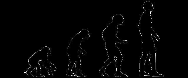 O Ensino Da Ciência E Da Evolução – Capítulo I