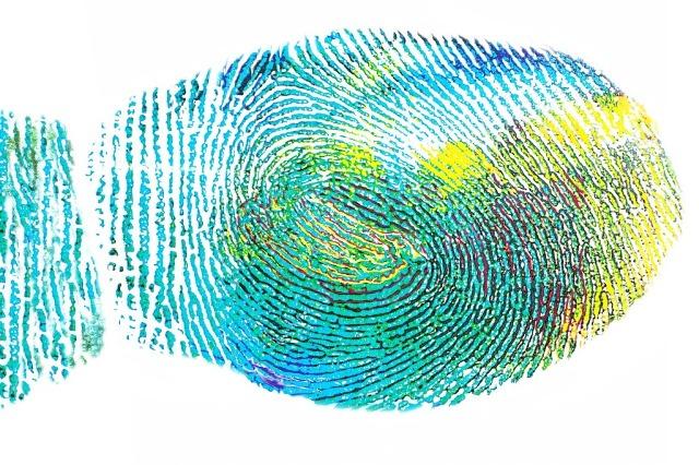 O Ser Humano Tem Possibilidades Ilimitadas De Identidade
