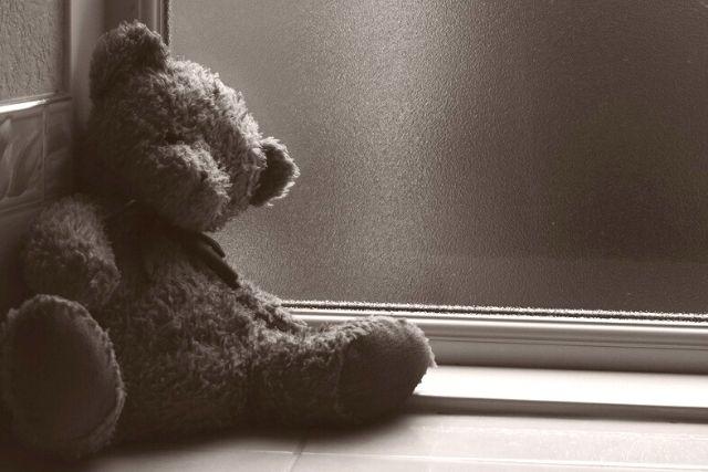 Urso De Pelúcia – Serenestarts Pixabay