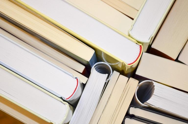 Livros Destaque Texto04 Numero6 Redimensionada