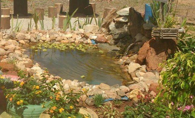 Experiências De Jardinagem Com Alunos Público-alvo Da Educação Especial